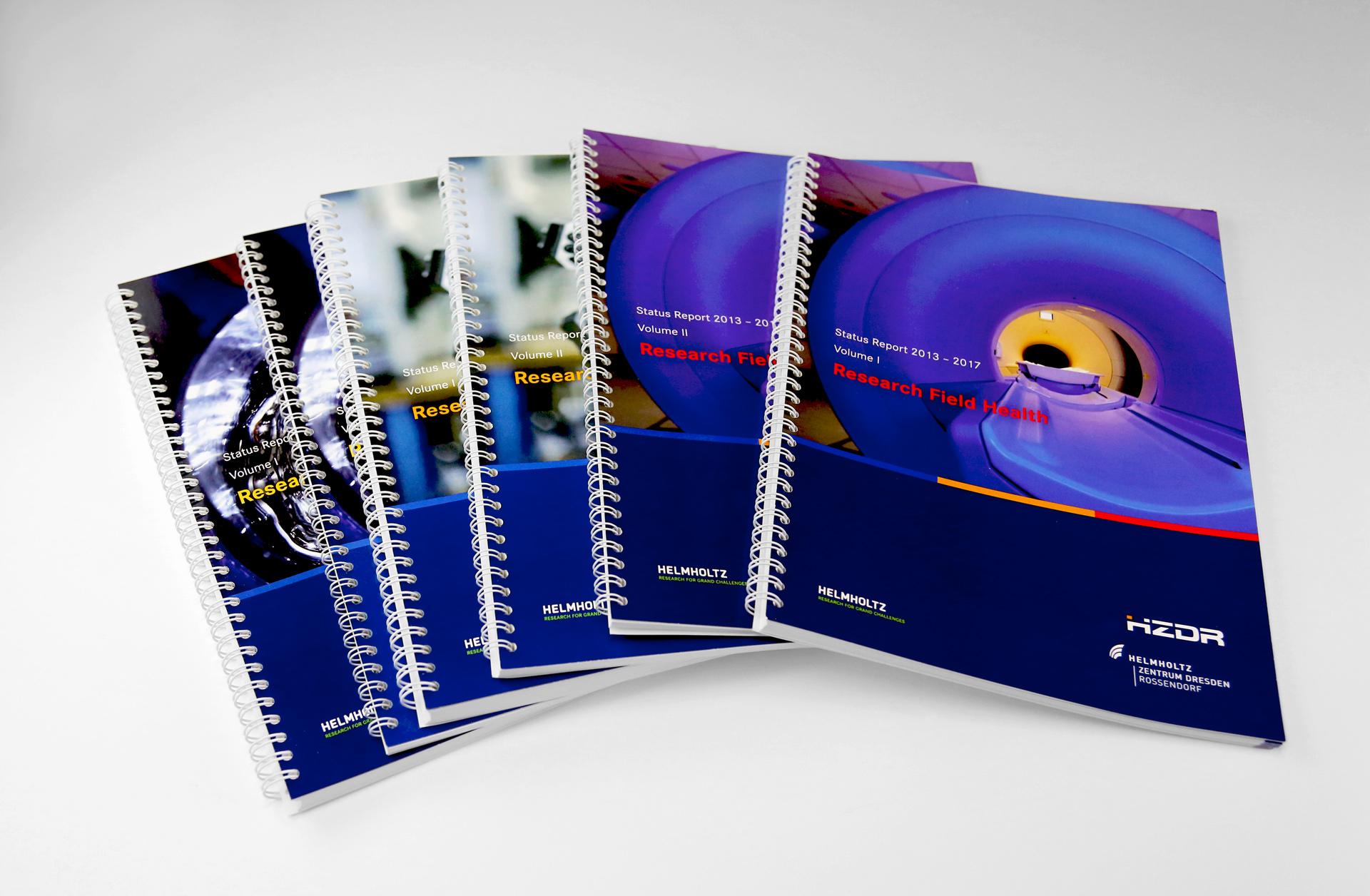 Statusreport 2013–2017 in 6 Bänden