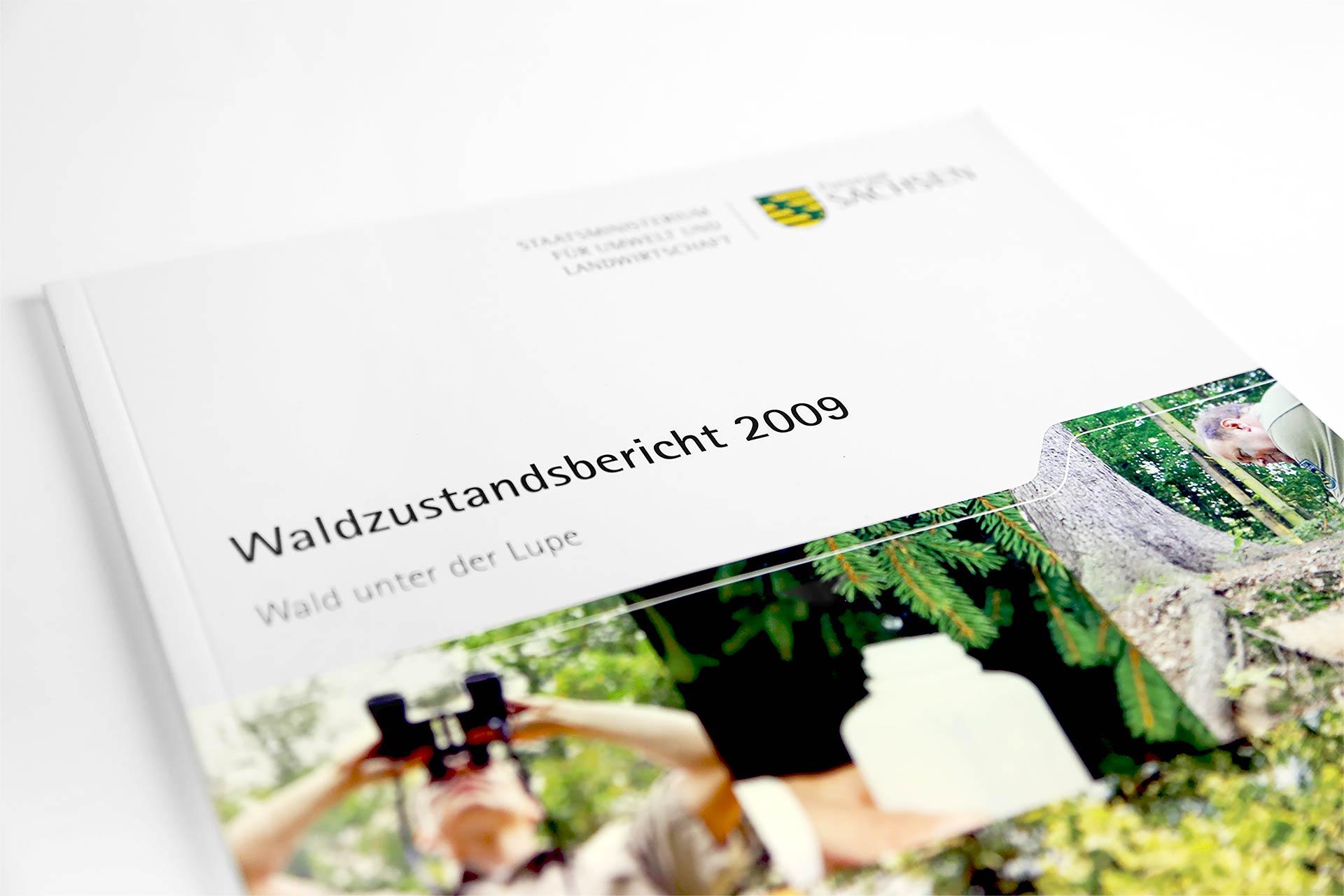 Waldzustandsbericht 2009