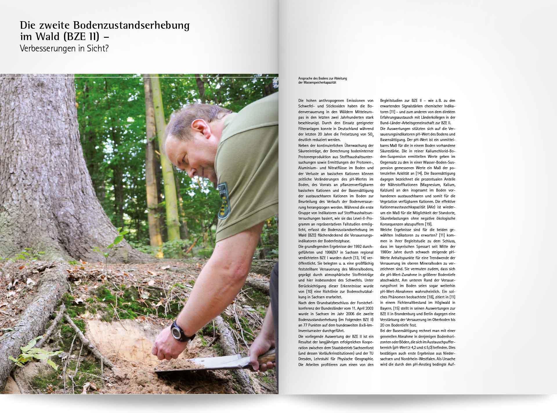 Beispielseite Waldzustandsbericht