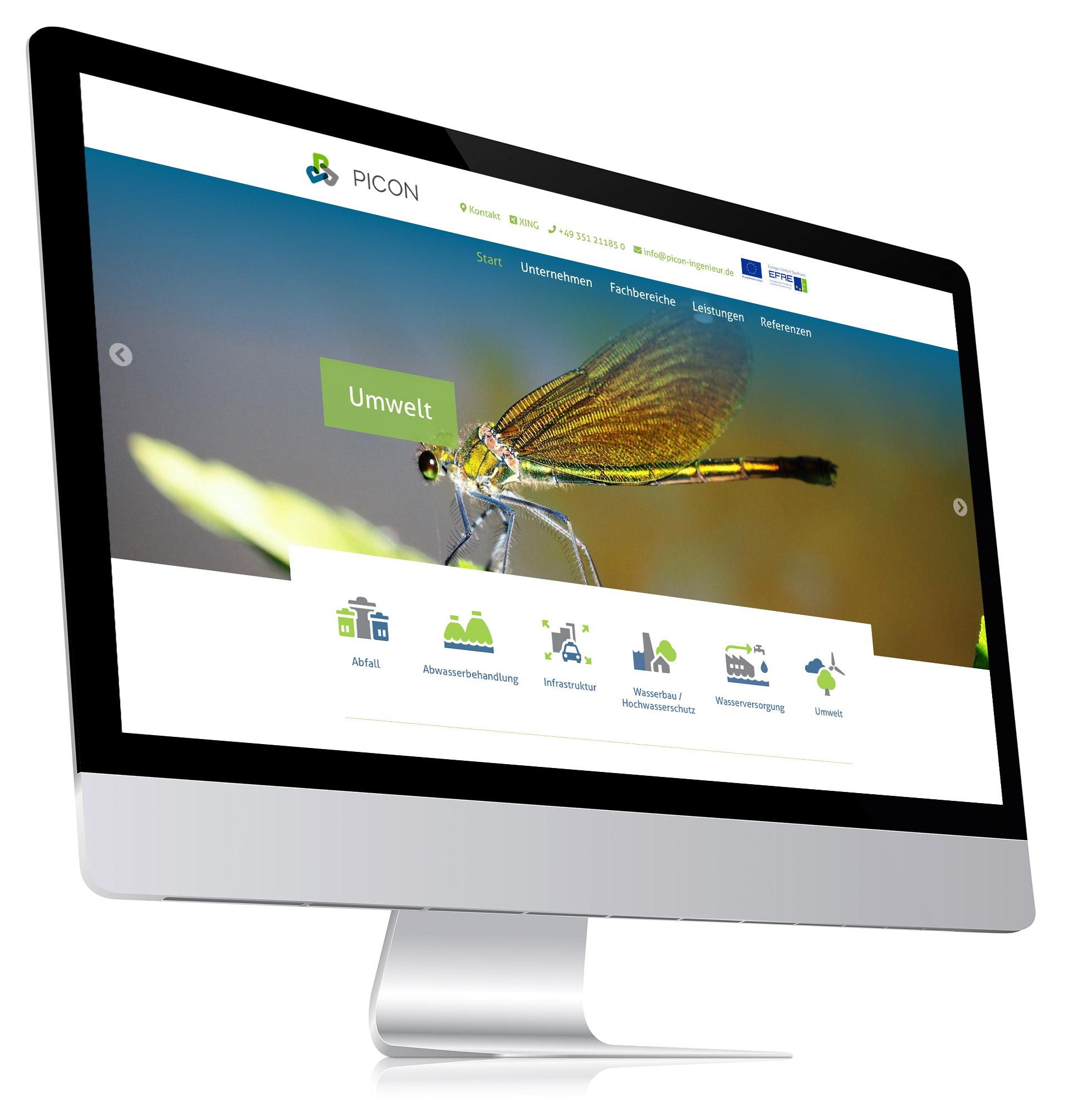 Visualisierung Picon-Webseite Desktopansicht